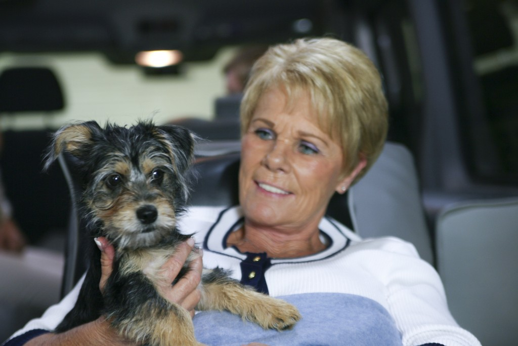 Pet Friendly Medical Transportation